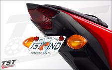 Yamaha 2015 2016 2017 YZF R3 Standard Fender Eliminator & Undertail Fairing Kit