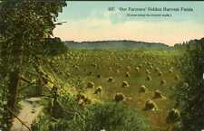 Farming ~ OUR FARMERS GOLDEN HARVEST FIELDS ~ Postcard 7215v