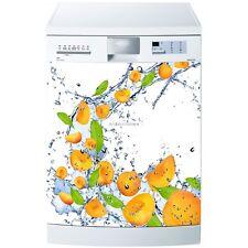 Magnete lavastoviglie Albicocche 60x60cm ref 531 531