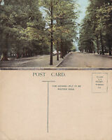 1910's THE AVENUE SOUTHAMPTON HAMPSHIRE UNUSED COLOUR POSTCARD