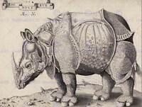 ENEA VICO ALBRECHT DURER ITALIAN RHINOCEROS OLD ART PAINTING POSTER BB5271B