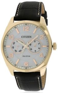 Citizen Eco-Drive Gold-Tone Leather Mens Watch AO9023-01A