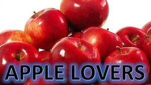 APPLE LOVERS COLLECTION Soy Wax Clamshell Break Away tart melt wickless candle