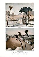 Landschaft Marokko XL Kunstdrucke 1928 von Willi Geiger * Schönbrunn Oase Grab