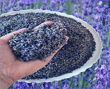 Lavender Bulk Buds Dried Flowers Blooms Florals for Dried Granular Fill 1oz