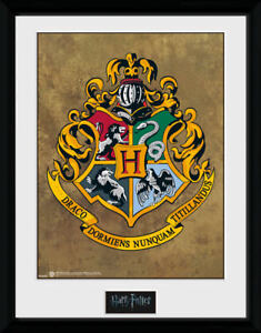 HARRY POTTER OFFICIAL HOGWARTS PICTURE FRAME 16x12 INCH - HARRY POTTER GIFTS