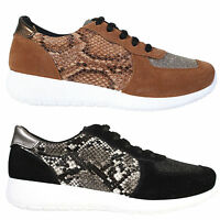Womens Ladies Snake Skin Lace Gym Fashion Casual Trainer Shoe Size 3 4 5 6 7 8