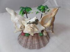 Vintage Florida Sea Shells Decor Handmade Real Sea Shells