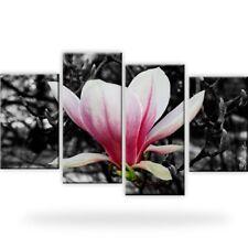 Magnolie Blumen Natur Bild Bilder Wandbild Kunstdruck 4 Teilig