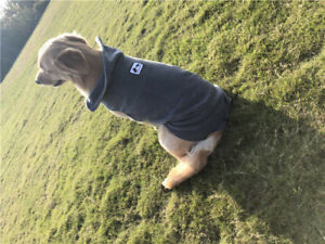 Dog Pet Polar Fleece Jacket Vest Warm Clothes Jumper Winter Coat