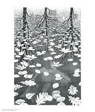 Three Worlds by M. C. Escher Art Print Fish Tree Leaves Fantasy Poster 21.5x25.5