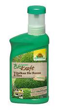 Neudorff BioKraft Vitalkur für Buxus & Ilex 300 ml