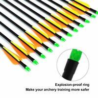 12Pcs 31.5'' Fiberglass Arrows Steel Field Tip For Recurve&Compound Bow Huting