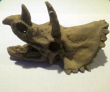 Dinosaur Triceratops Skull Dino Aquarium Ornament Fish Tank Reptile Vivarium New
