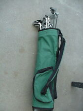 LADIES VERY NICE GOLF SET W 13 CLUBS CARRY BAG & BALL ALL MATCHING IRONS 176fc14