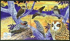 G819 SOLOMON ISLANDS 2004 #984 Birds, Owl etc, SOUVENIR SHEET S/S Mint NH