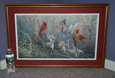 Liz Lesperance Limited Edition Delicate Balance Artists Proof 11/80 Cardinals