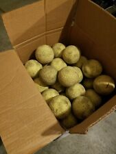 """New listing Heavily Used 9 Dozen= 108 Count 12"""" Dimpled Balls Machine Batting Cage Softballs"""