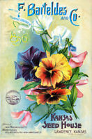 Seed Catalogue Cover Bruce2  Vintage Advertising Art  Print Poster