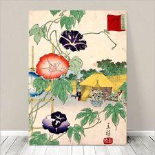 "Beautiful Japanese Floral Art ~ CANVAS PRINT 18x12"" ~ Morning Glory Koson"