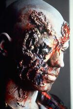 Dawn Of The Dead Zombie 11x17 Mini Poster