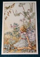 CICELY MARY BARKER FLOWER FAIRIES POSTCARD, THE STORK'S-BILL FAIRY, THE WAYSIDE