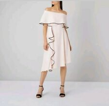 Coast Amory Dress Bardot Style Bias Hem tipped edge Blush Colour SIZE 10 bnwt