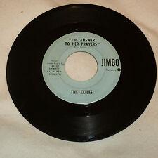 LEXINGTON, KY GARAGE BAND 45RPM RECORD - THE EXILES - JIMBO 809r-6711