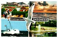 Postcard - GREETINGS FROM SKEGNESS,  LINCOLNSHIRE  ( Ref M11)