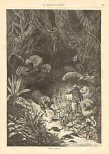 Hunting The Bull, Boleadoras, Bola, Vintage 1872 French Antique Art Print,