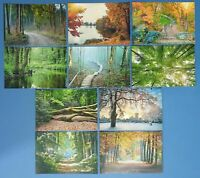 50 NEW Trees & Woodland Postcards, 10 designs, great for Postcrossing