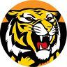 Sticker - Trading Card Sticker - AFL Richmond Tigers (B2) (2 Pcs)