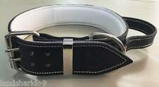Black & White Leather Dog Collar with a Handle for Firm Control