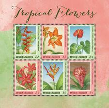 Antigua and Barbuda 2018 tropical flower I201901