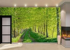 Birch Forest Summer Photo Wallpaper Wall Mural DECOR Paper Poster Wall art