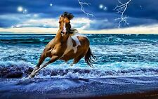 Running Horse in Surf Beach Home Decor Canvas Print, choose your size.