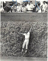 1965 Baseball Wire Photo,Chicago Cubs Ernie Banks v Philadelphia Phillies