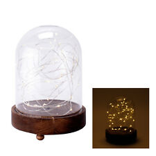 chaîne lumineuse LED cloche en verre pieds bois décoration de Noël fenêtre