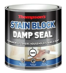 Thompsons White Stain Block Damp Seal Paint Protects Cover Prevents Stains 750ml