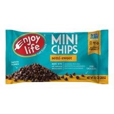 Enjoy Life Foods - Gluten Free Allergy Friendly Mini Chips Semi-Sweet - 10 oz.