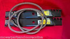 2 x Murray Predator Lawn Mower Blade & 037X86MA Belt- 95104E701 - 38 Inch