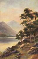 VINTAGE SHEEP LAKE & MOUNTAINS NEAR CAPEL CURIG NORTH WALES POSTCARD - UNUSED