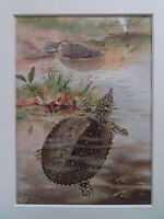 """RIVER TORTOISES NATURAL HISTORY  ANTIQUE  PRINT DATED 1860 10x8""""MOUNT"""