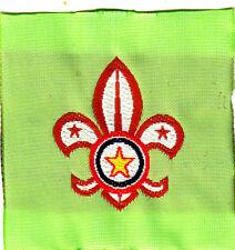 Boy Scout Membership Badge PARAGUAY orange
