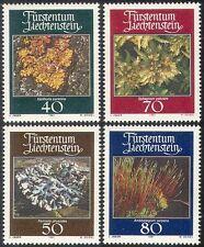 Liechtenstein 1981 Muschi/Licheni/Piante/NATURA/MUSCHIO/Lichene 4 V Set (n41778)