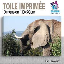 110x70cm - TOILE IMPRIMEE- TABLEAU  POSTER DECO - ELEPHANT FELIN - EL6-01T