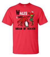 WALES RUGBY T SHIRT MENS SIX NATIONS 6 BREAD OF HEAVEN WELSH FLAG T56
