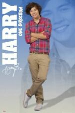One Direction Poster Harry Standing