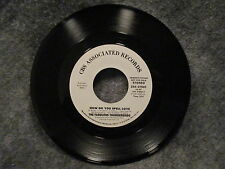 """45 RPM 7"""" Record The Fabulous Thunderbirds How Do You Spell Love Promo ZS4 07602"""
