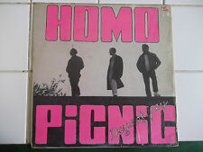 PUNK ROCK HOMOS PICNIC DAY OF GREY  RARE LP
